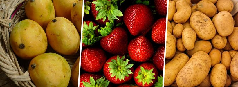 منتجات الاسماعيلية الزراعية IsmailiaAgriculturalProducts